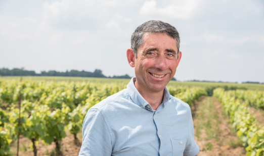 Vignoble Maillard - Les Vignerons - Cru Clisson