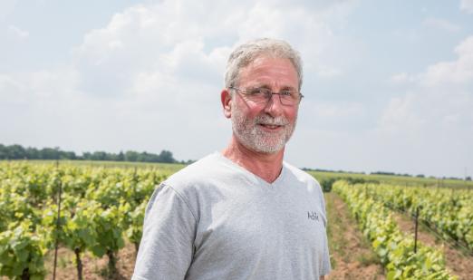 Vignoble Ollivier Frères - Les Vignerons - Cru Clisson