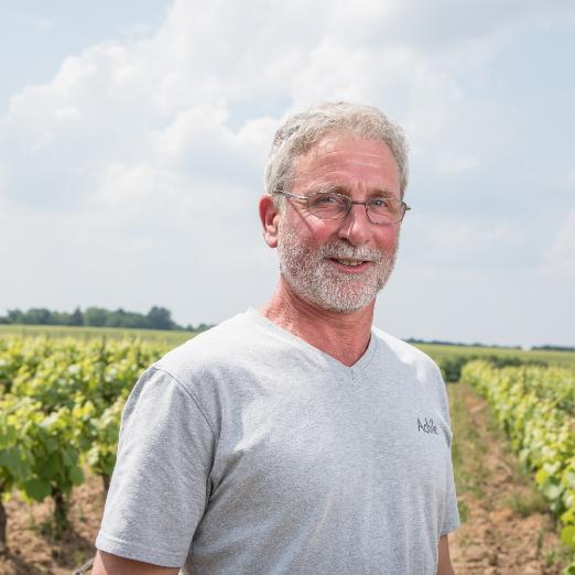 Vignoble Ollivier Frères - Vigneron - Cru Clisson